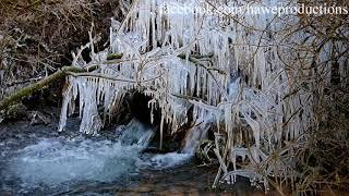 Eisige Zeiten- Ein kleiner Bach im Pfälzer Wald ist über und über mit Eiszapfen bedeckt - Naturfilm