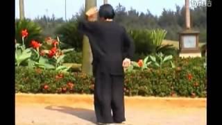 Download Lagu Emei Bagua Zhang by Xiao An Fa Gratis STAFABAND