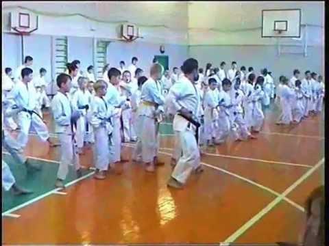 A.v. Dormenko - Seminar 2007 - Kokutsu Dachi No Kata video