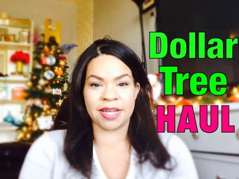 DOLLAR TREE HAUL | DECEMBER 2014