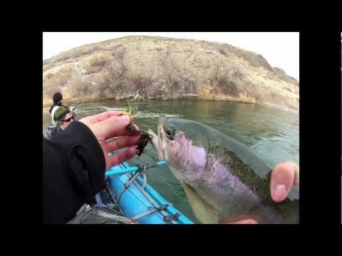 Fishing the Big Horn River in Fort Smith, Montana for big rainbows and browns