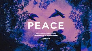 "⚡ [FREE]  Ariana Grande x Post Malone Type Beat ""Peace"""