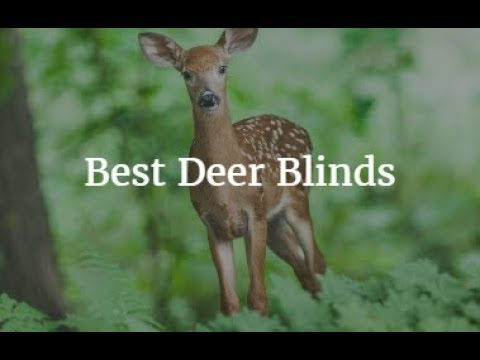 Best Deer Blinds 2018