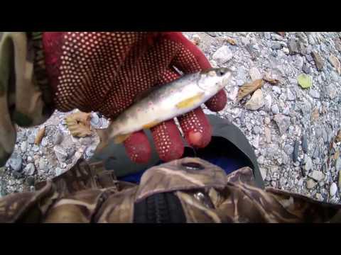поход рыбалка на форель