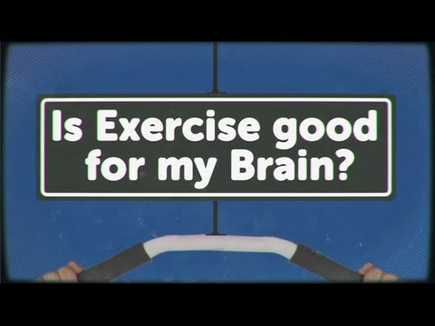 Is Exercise Good for My Brain? - BRITLAB