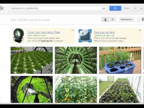 Hydroponics Gardening - How to Grow Flowers and Vegetables