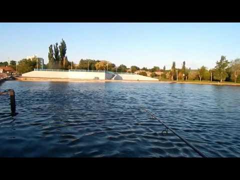 рыбалка в ростовской области в каменске