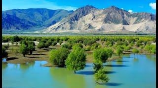 Chinese engineers plan 1,000km tunnel to make Xinjiang desert bloom