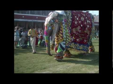 elephant festival Jaipur India 2008