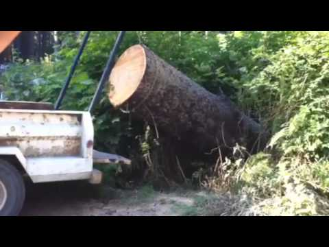 Lewis Winch lifts massive log into truck, most POWERFUL portable winch ever!!