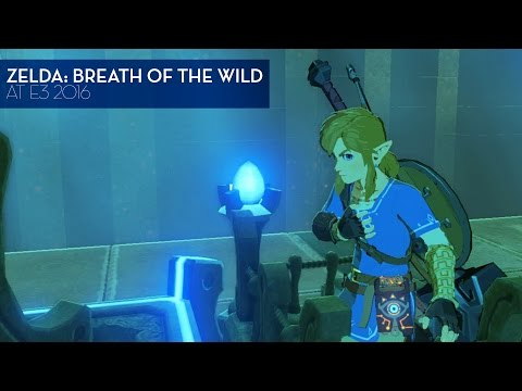 Legend of Zelda: Breath of the Wild Direct Feed, Nine Cool Moments