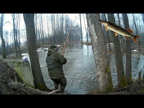 паук рыбодобывающий иначе эскалатор видео