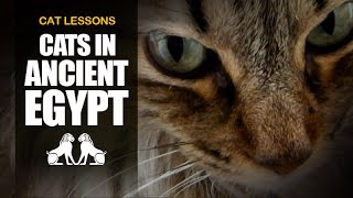 10 Facts About Cats in Ancient Egypt