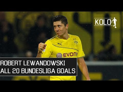 Robert Lewandowski ● All 20 Bundesliga Goals ● 2013/14 HD