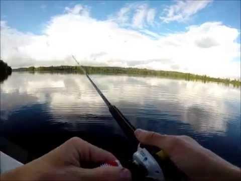 Hauen kalastusta joella