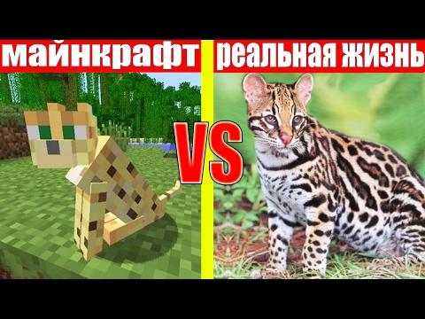 МАЙНКРАФТ ПРОТИВ РЕАЛЬНОЙ ЖИЗНИ 9 ! MINECRAFT VS REAL LIFE