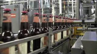 Dogfish Head CEO on craft beer trend
