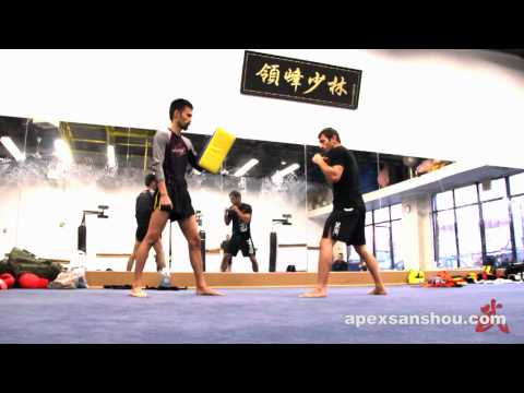 Apex Sanshou Team - Spinning Heel Kick Technique Tutorial Image 1