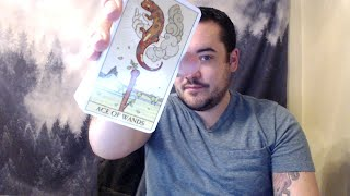 🦃ALL SIGNS NOVEMBER 15 DAILY INTUITIVE LOVE AND FINANCE TAROT READING 🌎🦃