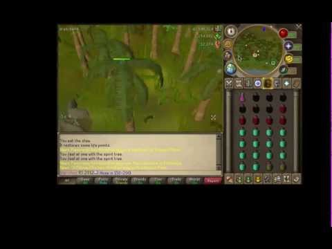 Runescape – Combat Training Guide 150k-200k Per hour  2012