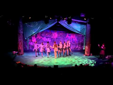 Saint Joseph High School Shrek the Musical Highlights