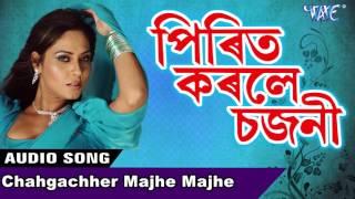 Chahgachher Majhe Majhe    NEW Assamese Song 2017    Kumar Suresh    Prit Karle Sajani