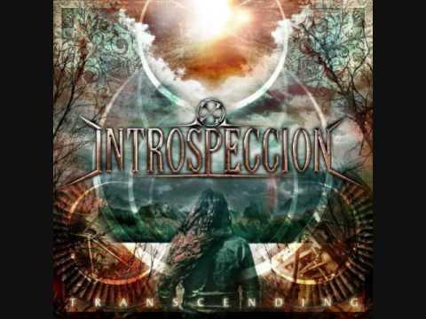 Introspeccion - Victim Of Circumstance