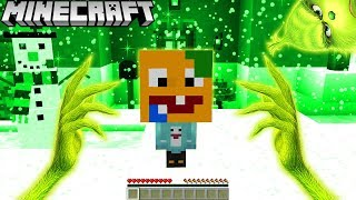 ICH TROLLE VITAMINE ALS GRINCH IN MINECRAFT!