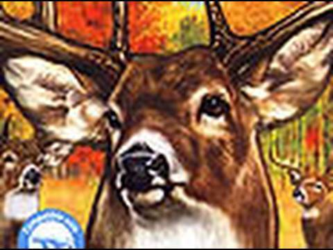 Classic Game Room CABELA'S MONSTER BUCK HUNTER for Nintendo Wii review
