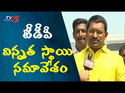 AP CM Chandrababu Naidu To Hold Meeting With TDP Ministers Today | TV5 News