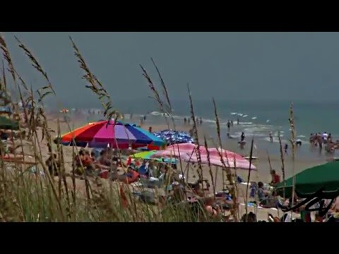 Florida Beaches - Jensen Sea Turtle Beach