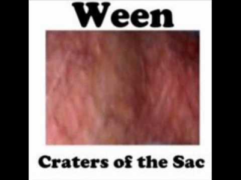 Ween - The Stallion Pt. 5