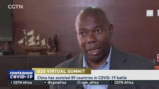 Economist weighs in on G20 Virtual Summit