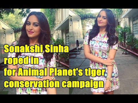 Wild Tiger, | Sonakshi Sinha roped in for Animal Planet's tiger conservation campaign