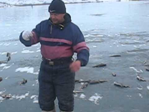 рыбалка на озере маркаколь видео