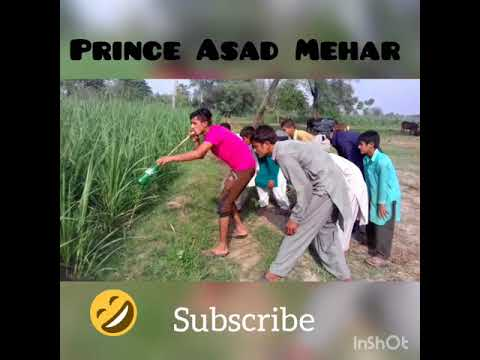 funny snake bansery prank village video /funny video whatsapp/