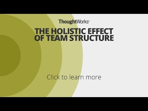 The holistic effect of team structure  |  Technology Radar Nov'16