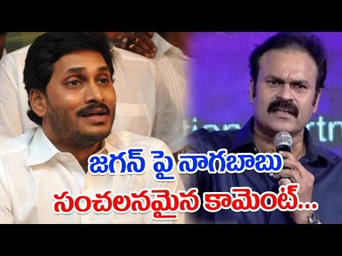 Mega brother Nagababu sensational comments II YS Jagan II Pulihora News