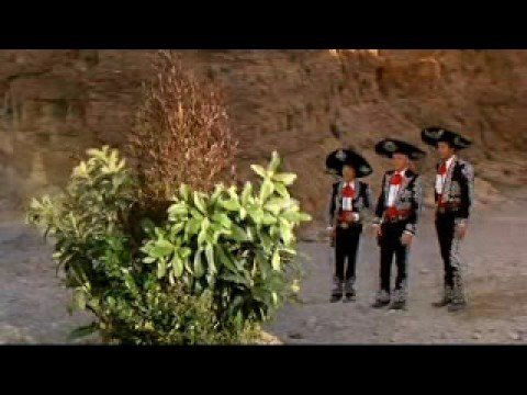 Singing Bush-The Three Amigos (1986), extrait de 3 amigos ! (1986)