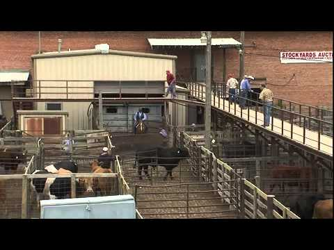Bennett-Watt Hd Productions Inc Inc  Oklahoma: Oklahoma National Stockyards
