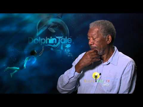 Morgan Freeman talks about preserving wildlife in 'Dolphin Tales' interview