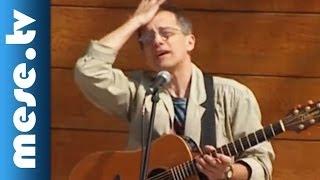 Huzella Péter: Költögető (dal, koncert részlet)