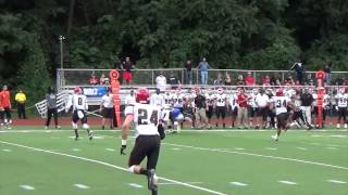 Widener Football Highlights vs. Albright (Sept. 20, 2014)