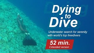Dying to dive. Search for serenity with world