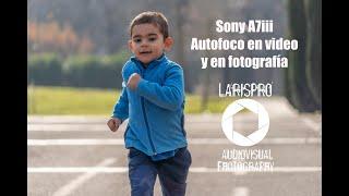 Sony A7iii Autofoco TEST