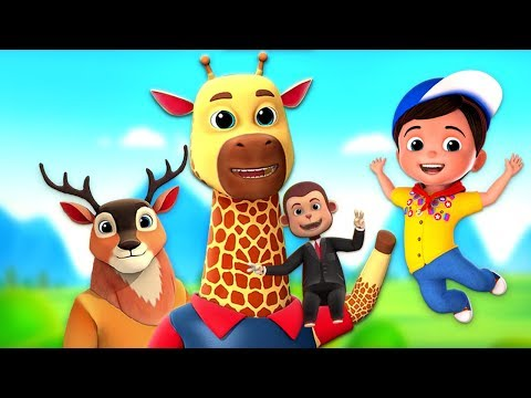 Zoo Song For Kids | Nursery Rhymes For Children By Junior Squad