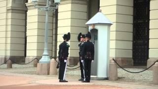 P8310901 Noruega Oslo Palacio Real cambio guardia