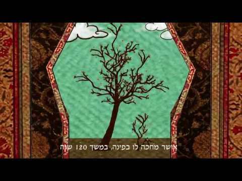 The Mountain Jews / Caucasus - Short Animation Film: NanuyNanam By Shosh Yusufov