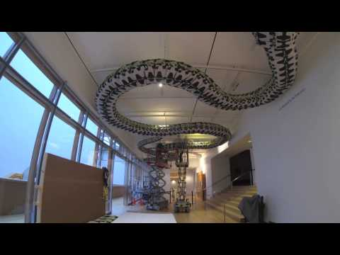 Installation of Ai Weiwei's Snake Ceiling at the Art Gallery of Ontario (time-lapse)