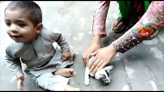 What a Baby Videos   Kids Collection Videos   Funny Videos 2019 *Desi Baby and Kids Video*